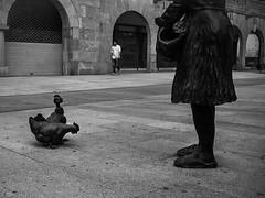 Iron Chicken (greatkithain) Tags: bw españa color byn digital flickr fuji bn pontevedra x10 byw icapture dzoom flickrstars flickraward pentaxian flickrestrellas pentaxart flickrglobal naturpixel mygearandme ringexcellence fujifilmx10