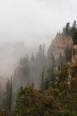 P9090613 (bluegrass0839) Tags: canyon national hoodoo bryce zion zionnationalpark brycecanyon nationalparks narrows hoodoos horsebackride parkthe