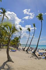 Palms (jflores_cl) Tags: travel beach dominicanrepublic playa viajes vacaciones caribe bayahibe amricalatina 2014 repblicadominicana bayahbe