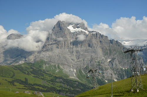 Wetterhorn from First,Grindelwald,Switzerland