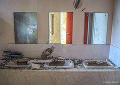 bathroom break (MC Snapper78) Tags: scotland nikond3300 building architecture mirrors sinks bathroom pirniehallresidentialschool croftamie abandoned ruin marilynconnor