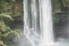 Palenque Misol Ha Falls-5