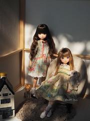In The Room (little dolls room) Tags: ruruko rurukodoll doll sekiguchidoll sekiguchi madeinjapan littledollsroom