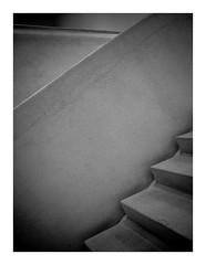 concretefolds (seba0815) Tags: grdiv monochrome bw black white blackandwhite bianco nero blanc noir schwarzweis czarnobiale stairs museum exhibition abstract concrete seba0815 ricohgrdiv folds concretefolds minimal