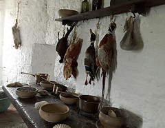 Earl's Kitchen (Églantine) Tags: earlskitchen bunrattycastle coclare ireland irlande pheasant rabbit food duck naturemorte stilllife amazingplace