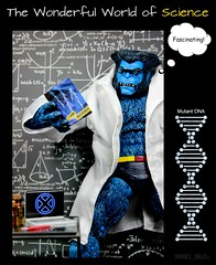 Perfect Picture Cycle 5 - Round 4: The Wonderful World of Science (MARVEL_DOLLS) Tags: variant comicbooktoys uncanny 12inch actionfigure marvelicon xmen 16scale beast henrymccoy drhankmccoy doctor scientist science lab laptop notebook playscale marvel marvelcomics marveluniverse superhero professorx charlesxavier blue fur