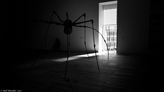 Arachnophobia. (Neil. Moralee) Tags: londonneilmoralee tate modern spider dark arachnid arachnophobia loise bourgeois sculpture neil moralee nikon black white bw bandw blackandwhite mono monochrome afraid fear terror insect huge display shadow sheblob mother d7100 18300mm window light sitting therapy aversion crawl creep