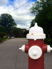 Perspective (byzantiumbooks) Tags: werehere he firehydrant