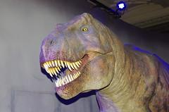IMGP8640 (Steve Guess) Tags: london england gb uk rbkc dinosaur trex animatronics