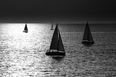 Sailing at sunset - Tel-Aviv beach (Lior. L) Tags: sailingatsunsettelavivbeach sailing sunset telaviv beach monochrome blackandwhite blackwhite silhouettes boats sea seascapes travel travelinisrael israel telavivbeach