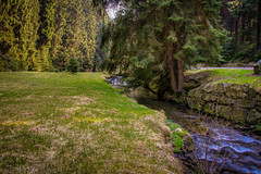 IMG_4520_1_2_fused-2 (André Leonhardt) Tags: beauty colors canon canonphotography deutschland erzgebirge eos70d frühling germany spring hdr hills landschaft landscape landscapephotography natur nature naturephotography oremountains photography trees tree water wasser waschleithe