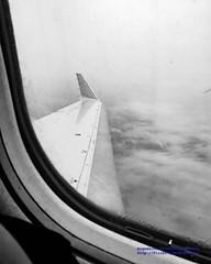 Kodalith Look Over & Under the CRJ-701ER Wing (AvgeekJoe) Tags: iflyalaska aerialphotograph alaskaair alaskaairlines bw blackwhite blackandwhite bombardier bombardiercrj700 bombardiercrj701er cjr crj700 crj701er d5300 dslr msn10031 n217ag nikon nikond5300 skywest skywestairlines aerial aerialphoto aerialphotography aircraft airplane aviation fromthewindow jetliner plane throughglass throughthewindow