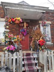 Festive (navejo) Tags: montreal quebec canada porch stairs carpet plasticplants festive parkex