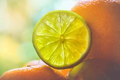 Citrus fruits (RoCafe on/off) Tags: 52stilllifes acid stilllife fruits citrus green orange yellow backlight natural light bokeh nikkormicro105f28 nikond600