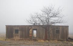 once was home (eDDie_TK) Tags: colorado co weldcountyco weldcounty johnstownco berthoudco abandoned boxcar railroadboxcar fog weather