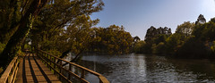 River walk (ЈΘŠΞПΔ72 ) Tags: fuji fujifilmx100f galicia pontevedra josema72 river rio riverwalk