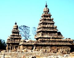 India 2017 7 (megegj)) Tags: gert india tempel temple