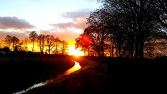 River sunset (michellemätzig) Tags: sun sunset sunrise sunmer spring summer gold orange red black nature europe germany landscape river colour light shadow wow awesome incredible exciting good gorgeous best beautiful favorite fantastic