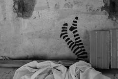 _DSF1243 (Vi*TeK) Tags: leg gambe stencil murales graffiti muro orfanotrofio disuso abbandono