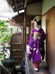 Maiko_20170306_24_62 (kyoto flower) Tags: tondaya fukuno kyoto maiko 20170306 舞妓 冨田屋 ふく乃 京都 hidekiishibashi