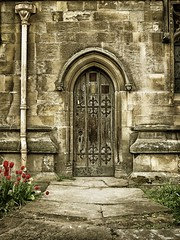 Path to Holy Trinity. (Blues Views) Tags: church collective52photoproject sigmalens sigma19mmf28artlens olympuspenep3 stonework carvedstone stone pavement path door outdoors building gargoyles flowers tulips grass green red holytrinity hull eastyorkshire