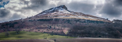 Yorkshire's Own Matterhorn (Osgoldcross Photography) Tags: landscape hill mountain roseberrytopping yorkshire northyorkshire slopes stone trees snow ice winter matterhorn stitched panorama nikon nikond7100 raw nature scree vegitation sky clouds moody