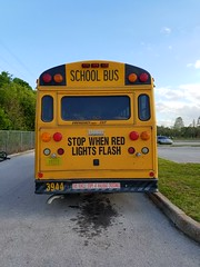 #3944 - 2002 Thomas Saf-T-Liner HD (Brady Backhoff) Tags: 3944 florida school bus hillsborough county thomas saftliner hd hdx cummins isc
