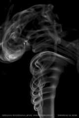 Smoke art: Spinal (srkirad) Tags: abstract indoor smoke art smokeart bw blackandwhite blackwhite black white monochrome background spin spinal spiral
