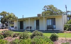124 Carbone Rd, Leeton NSW