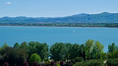 Vela sul Trasimeno (Marco_968) Tags: umbria lago lake trasimeno vela acqua water castiglione italy