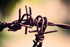 Hold me tight and never let me go.. (renkata23) Tags: rusty wire tight forever always close up closer rust nikon mood nikonbulgaria macro