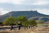 califato de Gormaz (nuri_bri) Tags: soria califatodegormaz castillo españa spain es castillalamancha camposdecastilla