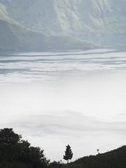 © Indonesia Pulau Samosir Toba Lake North Sumatra Southeast-Asia Sumatera Utara - Indonesien Südost-Asien Nord-Sumatra (hn.) Tags: asia asien copyright copyrighted danau danautoba heiconeumeyer id indonesia indonesian indonesien indonesisch insel island lake laketoba nord nordsumatra north northsumatra pulausamosir samosir samosirisland see silhouette southeastasia sumatera sumaterautara sumatra südostasien toba tobalake tobasee utara