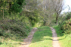 track (fen-tastic) Tags: landscape woodland track woods path rural countryside caminhos