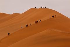 Climbing (José Rambaud) Tags: duna dune desert desierto namibia namib namibdesert africa arena sand dunas dunes red rojo landscape paisaje paisagem paysage naturaleza nature natura natureza viaje traveler travel traveller