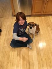February 2016 (Area Bridges) Tags: 2016 february 201602 dog dexter home milford eddie