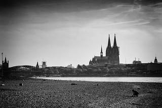 Köln - Wir sind bunt