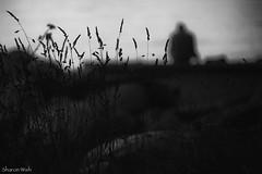 seeing things (bluechameleon) Tags: sunset summer blackandwhite bw man bokeh seawall englishbay grasses bluechameleon artlibre sharonwish bluechameleonphotography