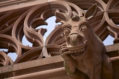Regard (Tchou') Tags: sculpture cathedral gargoyle strasbourg cathédrale gargouille regard