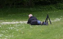 claustralic 147 marknra (brandsvig) Tags: park castle nature canon skne fotograf photographer sweden may sverige bara slot malm torup claustral 2014 slott bokskogen ef70200f4lusm canon40d