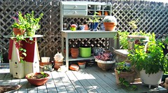 potting table close-up (YourCastlesDecor) Tags: plants planters yardwork pottingtable birdhousetable