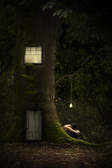 outgrown and left out (Gabriel Tomoiaga) Tags: door window forest creative conceptual whimsical fineartphotography creativephotography conceptualphotography finephotography