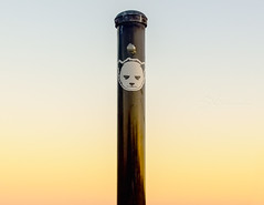 SNP_1110 (S.N_Photography) Tags: sunset sticker warm panda pole gradient