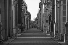 Recoletos II (peladomal ) Tags: buenos aires cementerio recoleta