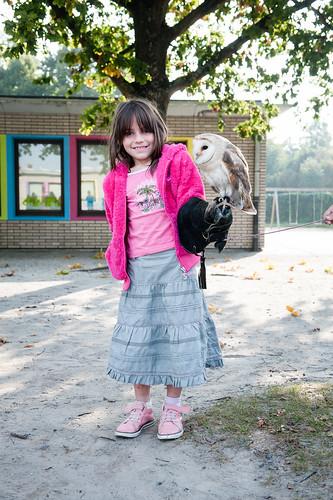 Roofvogels op school