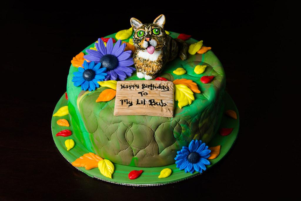 Cat Cake Lil Bub