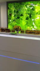 "#HummerCatering #Eventcatering #mobilebar #Smoothiebar #Fruchtdrink #Catering,  #Gesundheitstag in #Willich #Saint-Gobain • <a style=""font-size:0.8em;"" href=""http://www.flickr.com/photos/69233503@N08/15281737037/"" target=""_blank"">View on Flickr</a>"