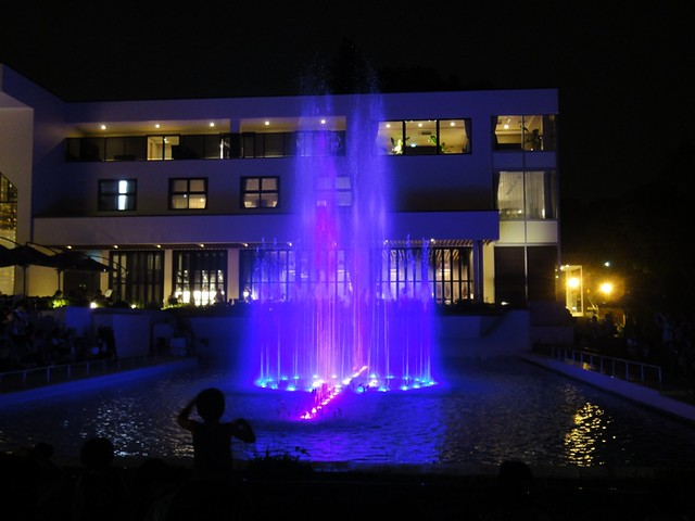 植物園側では、音楽に合わせて噴水と光のショーが10分おき程度。|名古屋市東山動植物園