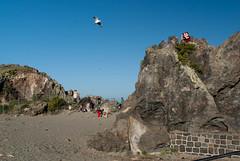 Getting that Shot! (Jocey K) Tags: newzealand christchurch sky people seagulls beach seaside rocks bankspeninsula sumner volcanicrocks