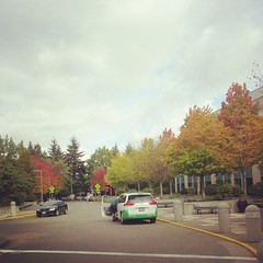 Fall colors (TatsGill) Tags: square washington squareformat redmond rise microsoftcampus iphoneography instagramapp uploaded:by=instagram foursquare:venue=4b44bc4bf964a520b6fa25e3